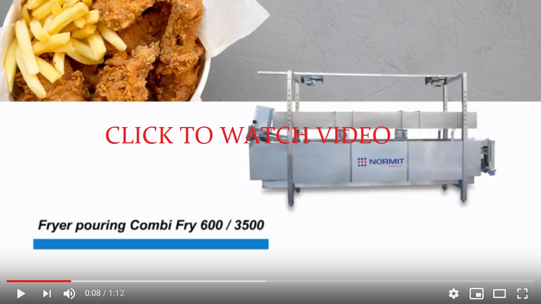 continuous industrial fryer, frying machine, catering fryer