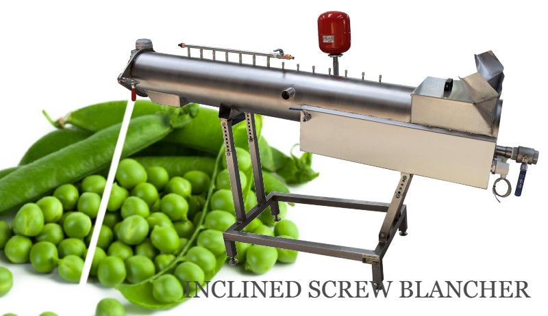 Screw Blancher | Potato blanching machine NORMIT