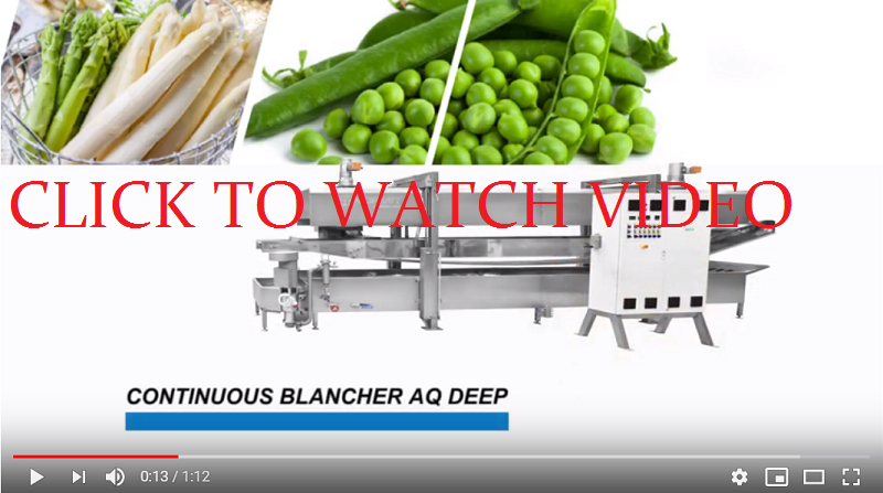 Continuous blancher / Vegetable blanching machine