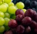 Grape processing equipment/ Wine production line